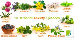 10-herbs-for-anxiety-episodes